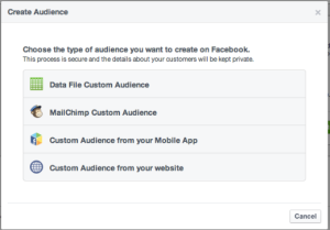 fb-create-audience2